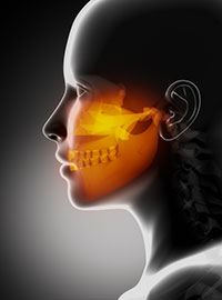 Diagram of Trauma to the Jaw used by Ann Arbor dentist at Embree Dentistry.